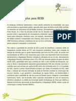 Carta de Princípios para REDD