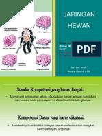 presentasi-jaringan-hewan
