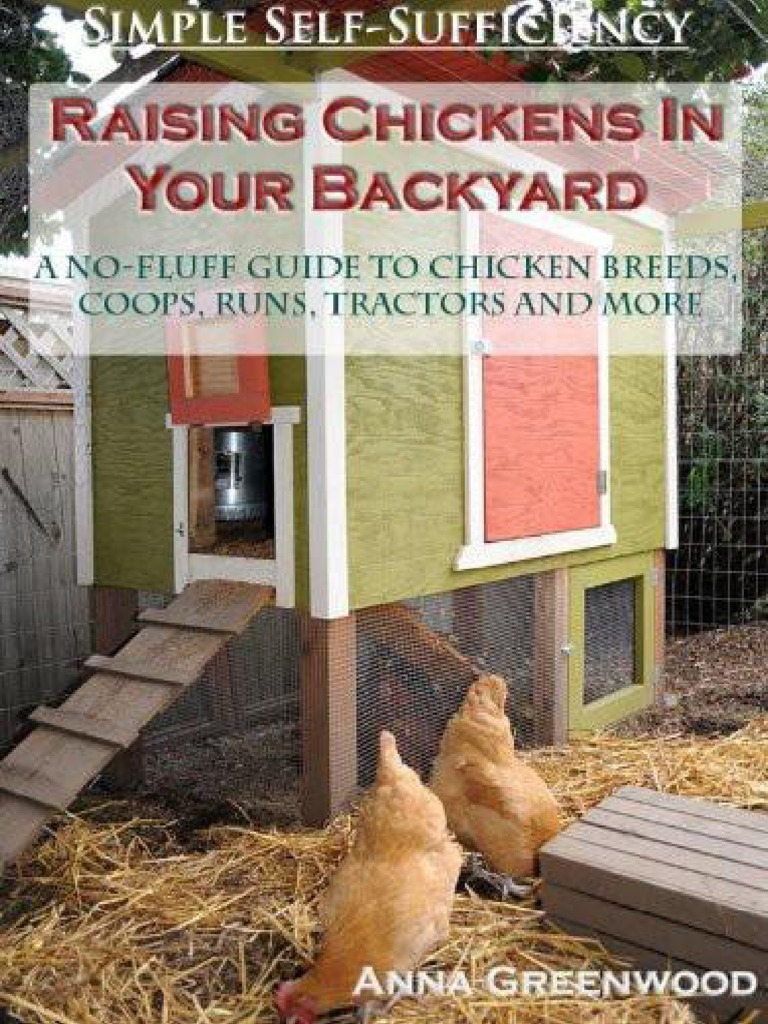 raising chickens in your backyard a no fluff guide to chicken