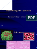 PPT 15 microbiology.ppt