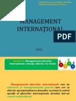 Seminar mg. international.pptx