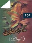 Gaey Mausamoon Ki Batain-Autobiography-Maqsood Ur Rasool-Sergodha-1989