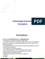 HOMOPTERAS PPT