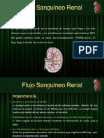 Flujo Sanguíneo Renal-MARIBI-1