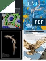 2010 HHMI Bulletin (Aug'10) (Masters of Regeneration).pdf