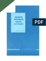 Helmintos Rinconmedico.org
