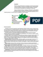 221 - Fitogeografia - biomas brasileiros