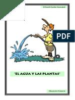 El Agua y Las Plantas