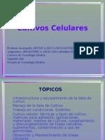 Clase Cultivos Celulares[1]