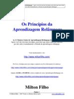 Os Principios Da Aprendizagem Relampago