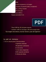 002A - Generalidades de La Piel