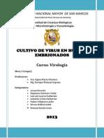 Cultivo de Virus en Huevos Embrionados