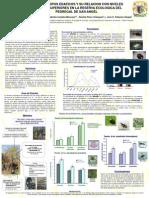 Cartel Ecologia 2011