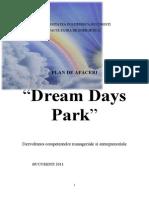 Plan afaceri Dream.doc