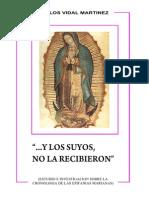 y Los Suyos No La Recibieron_carlos Vidal_apariciones_virgen_maria