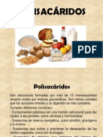 Polisacaridos Rosina 2013