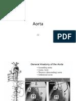 aorta.pptx