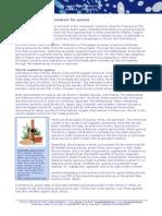 Tailored Market Intelligence 2010 - Quinoa - Promising Eu Export Markets 0