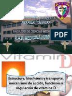 Estructura, Biosintesis y Transporte, Mecanismo De
