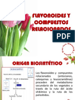 FLAVONOIDES 2013