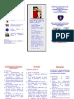 TRIPTICO PLAN DE ACCION ANTE UNA EMERGENCIA.pdf