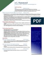resume 2013 smaller file blue