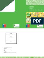 61797397-Ejercicios-matematica-1-basico