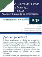 cisticercosis #1 (parasitosis)