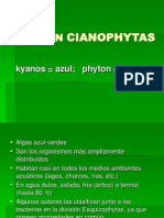A Cianophytas