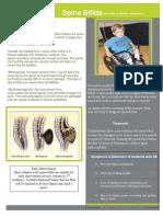 christine romero SPED fact sheet.docx