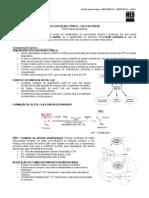 Bioqumica-ciclo de Krebs