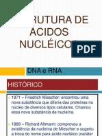 1 - Estrutura de ácidos nucléicos