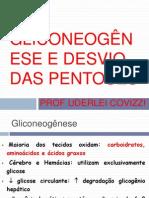Aula 4 - Gliconeogênese