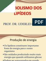 Aula 8 - Metabolismo de lipídeos