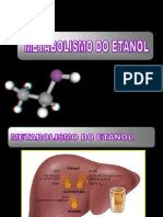 Aula 10 - Metabolismo Do Etanol
