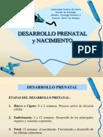 -3&Deg;- I Unidad - Desarrollo Prenatal y Nacimiento