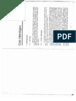 VILLELA-Cap1. CicloHidrológico.pdf