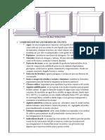 Informe 2 Lab Micro