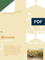 Presentacion Con Imagenes2