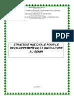 Stratégie Nationale pour le développement de la riziculture au Bénin