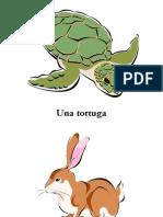 Mascotas (Pets)