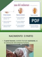 Parto y Desarrollo Prenatal