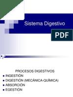 1_SistemaDigestivo Tercero 2013