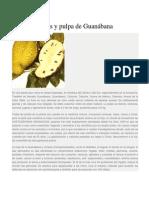Hojas y pulpa de Guanábana