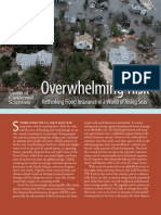 Overwhelming Risk -  Full Report.pdf