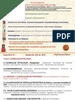 TEMA 2.3. RETICULO ENDOPLÁSMICO. APARATO DE GOLGI