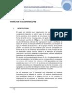 hidrolisis de carbohidratos.docx