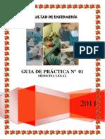 GUIA DE PRÁCTICA Nº  01