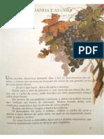 A aranha e as uvas.pdf
