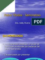 Fiebre Tifoidea - Salmonelosis